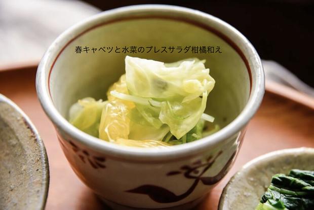春キャベツと水菜のプレスサラダ柑橘和え