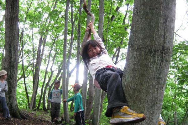 やまぼうし自然学校(森遊び)