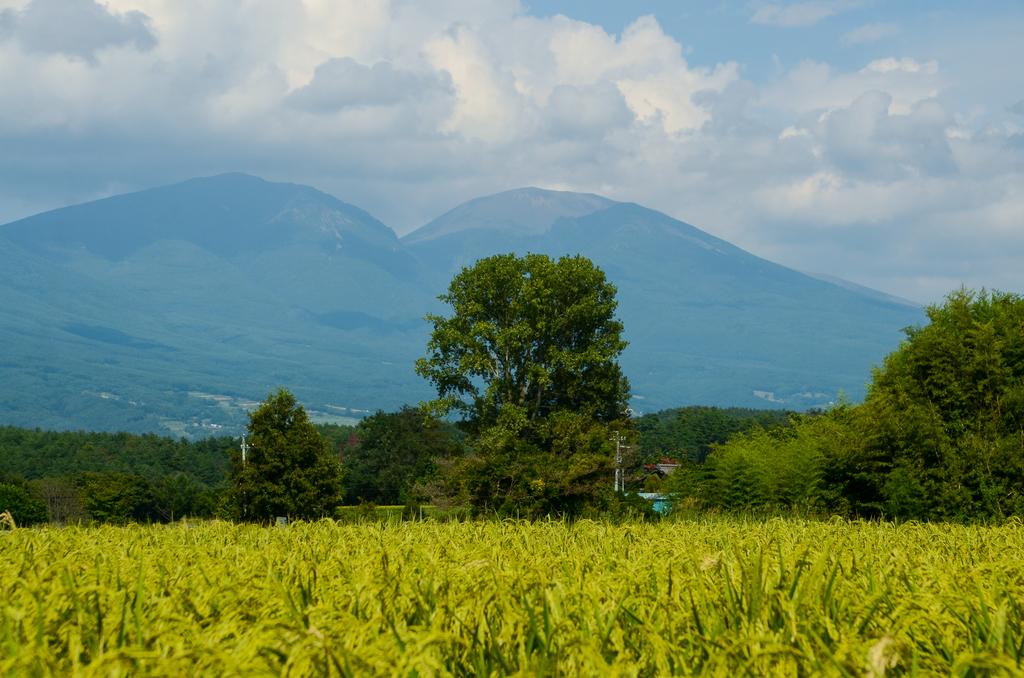 御牧ヶ原から見た浅間山
